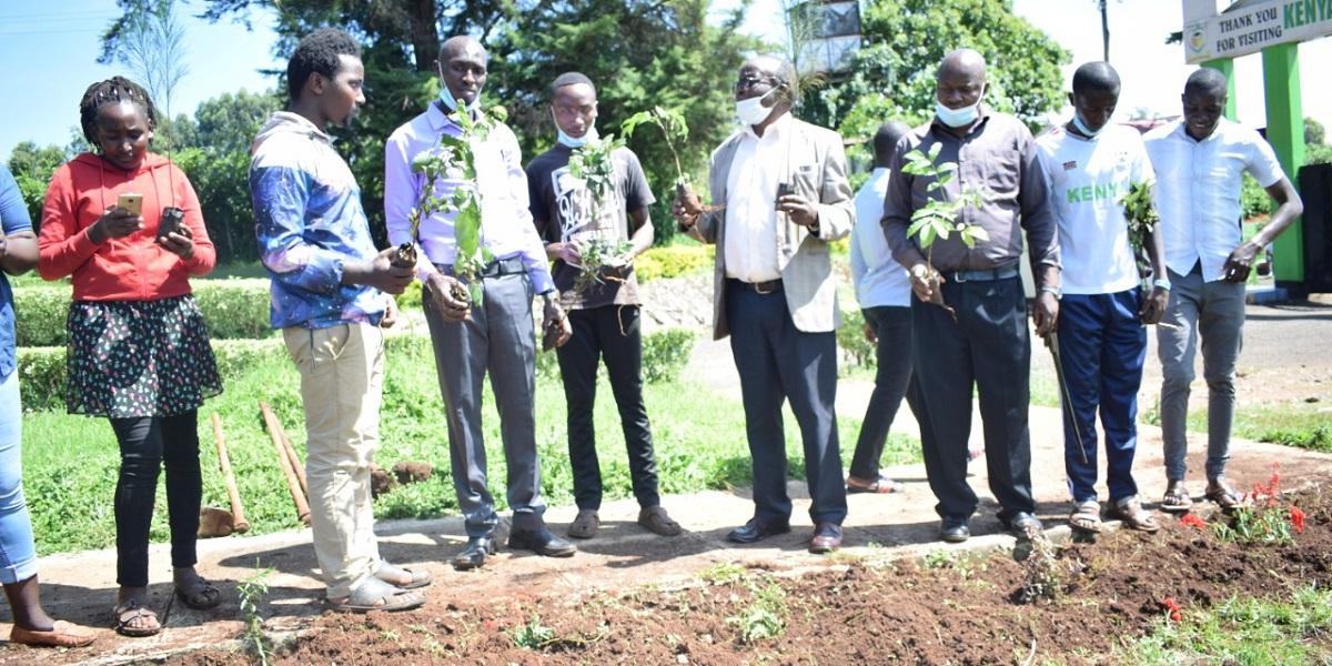 Tree Planting Event at KHU